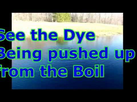 Pond Dye benefits movement staining