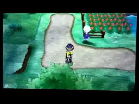[TUTO]: Comment avoir un chromatique: Pokemon X et Y