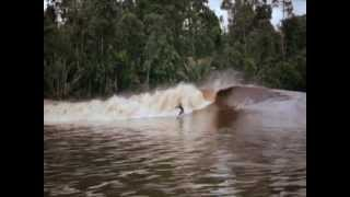 """surfing on the river """"The exciting Bono Pelalawan, Riau, Indonesia"""