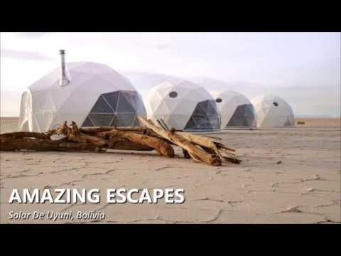 Geodesic dome supplier in china-2000m2 Dome structure Factory