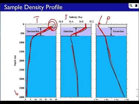 Seawater Density