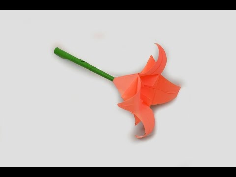 How to make a paper Lily?