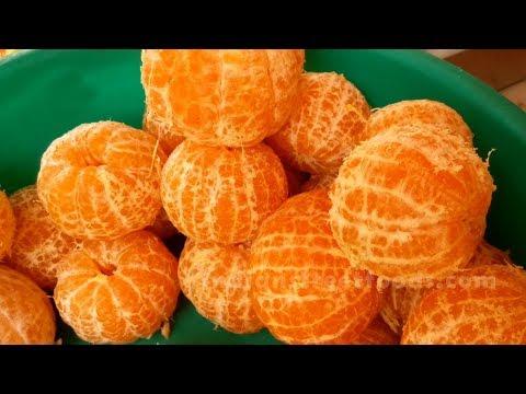 Orange Juice   Summer Drinks