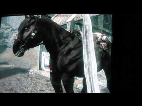 Water u duin: Skyrim horse