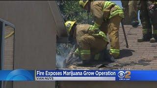 Fire At Van Nuys Home Tips Authorities To Marijuana Grow Operation