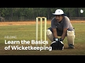 Learn the Basics of Wicketkeeping | Cricket
