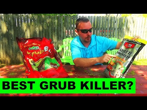 How to kill grubs in your lawn, and How to prevent grubs in your lawn