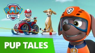 Everest and Zuma Save the Deer! 🦌 PAW Patrol Pup Tales Rescue Episode!