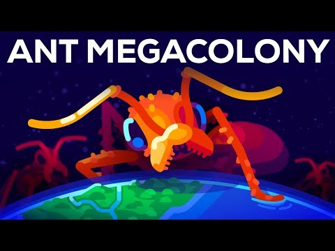 Xxx Mp4 The Billion Ant Mega Colony And The Biggest War On Earth 3gp Sex