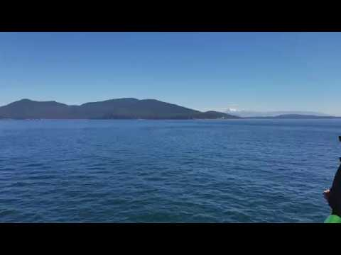 Beautiful view from the San Juan Island Ferry August 27th 2017