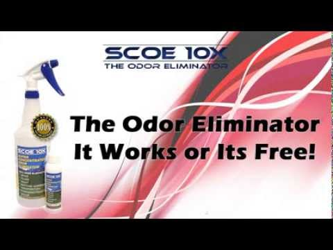 Get Dog Smell Out Of Couch SCOE 10X The Odor Eliminator