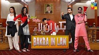 Bakra In Law | HUM TV | Telefilm