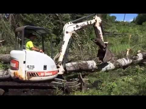Deep Woods Repair