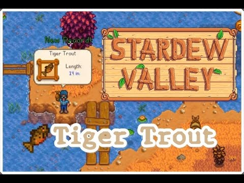 Tiger Trout (Cought 3 fish in 2 minutes) : Stardew Valley