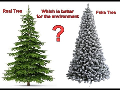 Which Christmas Tree is Better for the Environment - Real or Artificial
