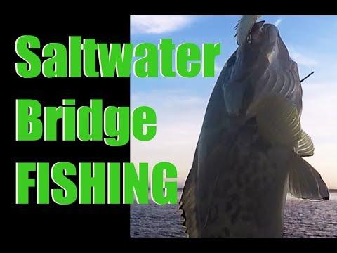 Fishing Around  Bridges In Saltwater