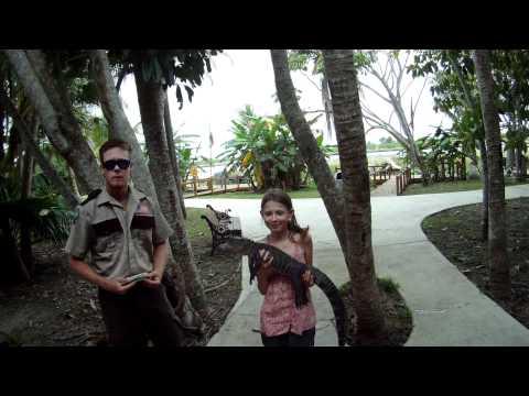 Gator Catch   Amalie og Lucas   Everglades Florida