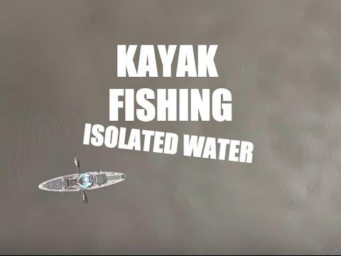 Kayak Bass Fishing: Isolated Creeks on Toledo Bend