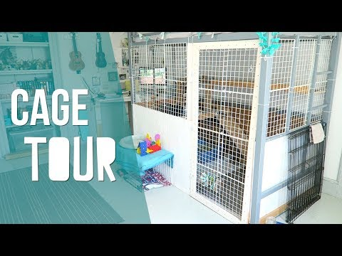 DIY Rabbit Cage - Cage Tour