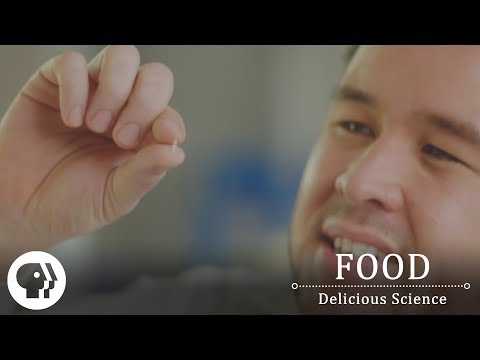 FOOD - DELICIOUS SCIENCE | The Food That Powers Half The Planet | PBS Food