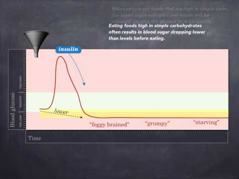 Managing Blood Sugar Levels - Brain Fuel Cookbook Animation