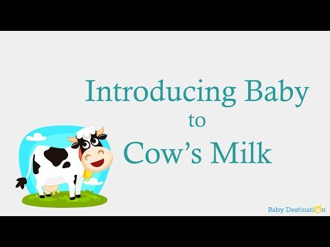 Introducing Baby to Cow's Milk