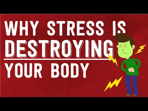 Why Stress is DESTROYING Your Body