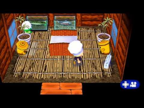 Lets Play Animal Crossing City Folk Day 57: The Bridge
