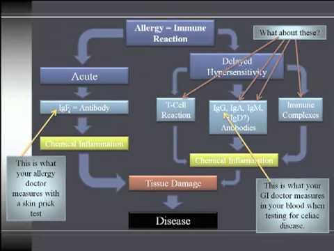 Gluten Sensitivity Vs. Celiac Disease Vs. Gluten Intolerance