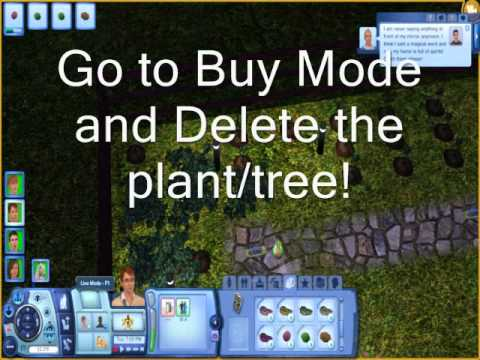 How to Sims 3: How to get a perfect garden