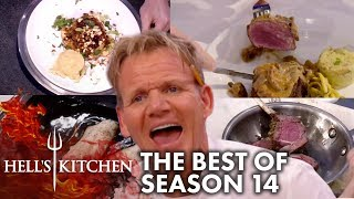 Download The Best Moments Of Hell's Kitchen Season 14 Video