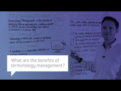 What are the benefits of terminology management?