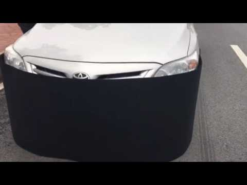 How To Keep Rodents/rat/mice Out Of Your Car,car rat proof cover