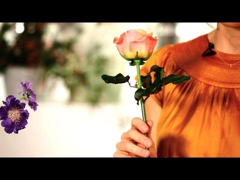 How to Make Roses Last Longer | Wedding Flowers
