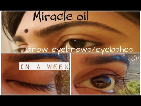How to grow eyebrows eyelashes within a WEEK!  DIY miracle oil for long eyelash/eyebrows