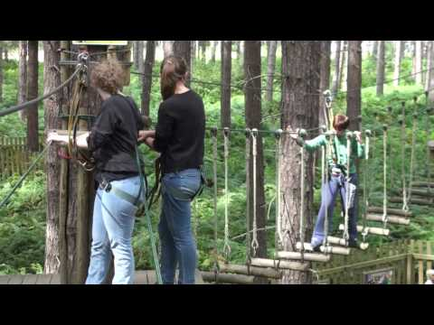 Go Ape, Sherwood Forest, Nottingham