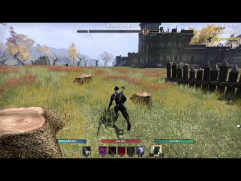Two sniper shots at The Elder Scrolls Online - Ice Bow