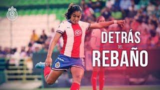 Chivas Femenil en #BonitoLeónRojiblanco | Detrás del Rebaño | Chivas Femenil 1-2 León