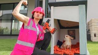 Building My Tiny Dog A Tiny House