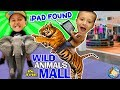 TIGER RIDES In A MALL Found Lost IPad FUNnel V Vlog