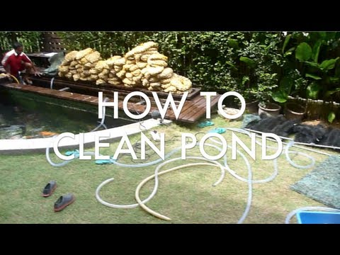 TL's HOW TO CLEAN 13,000 gal Pond & Tank!
