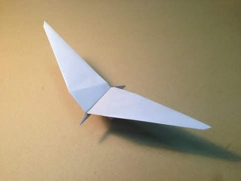 How to Make a Paper Plane / Origami Bird / Common Gull