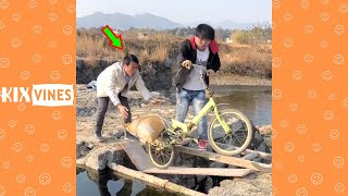 Funny videos 2021 ✦ Funny pranks try not to laugh challenge P174