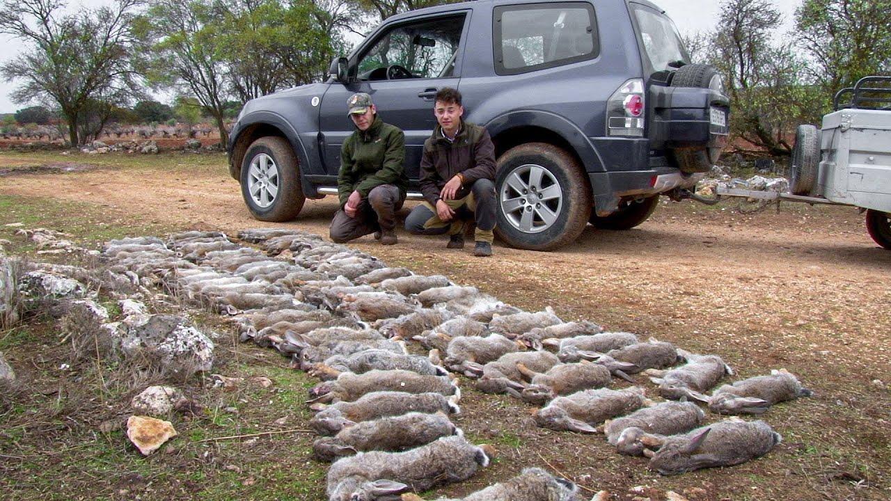La caza, la ayuda a la agricultura