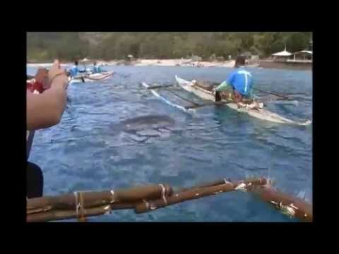 Oslob Butanding - Whale shark Watching