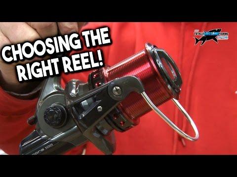 Choosing the Best Fixed Spool Spinning Reel for Beach Fishing | TAFishing