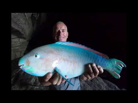Cave Fishing Kalbarri 2018