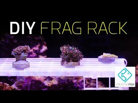HOW TO: DIY Coral Frag Rack On The Cheap!
