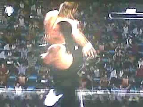 undertaker chokeslams hbk off steel cage