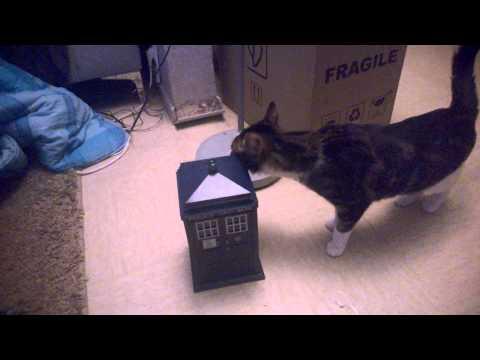 TARDIS VS CAT